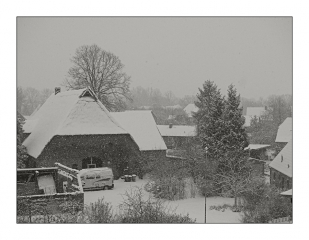 warnauer-winter-2009.jpg